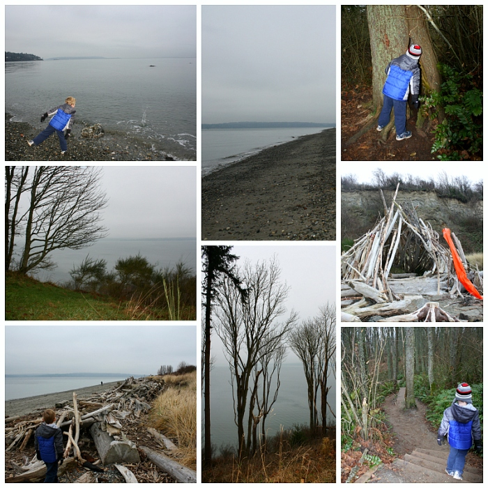 Discovery Park 5