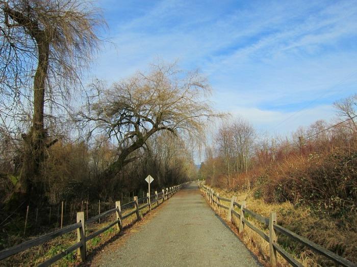 East Lake Sammamish Trail2