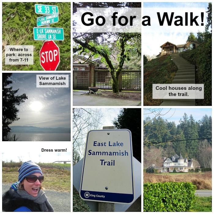 East Lake Sammamish Trail4