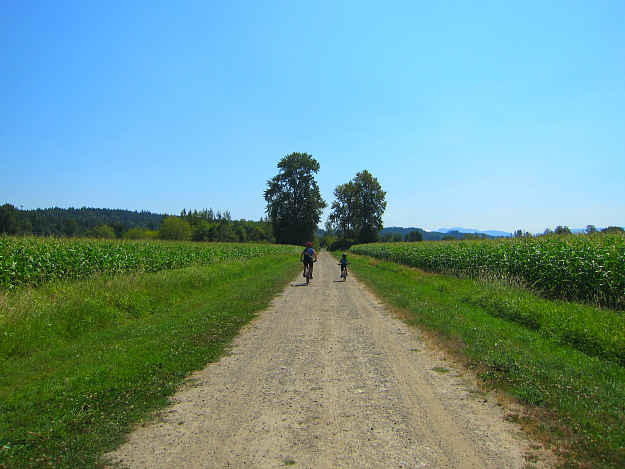 Snoqualmie Valley Trail 3