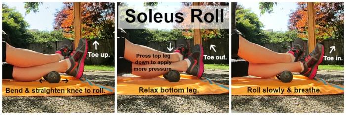 Soleus Roll