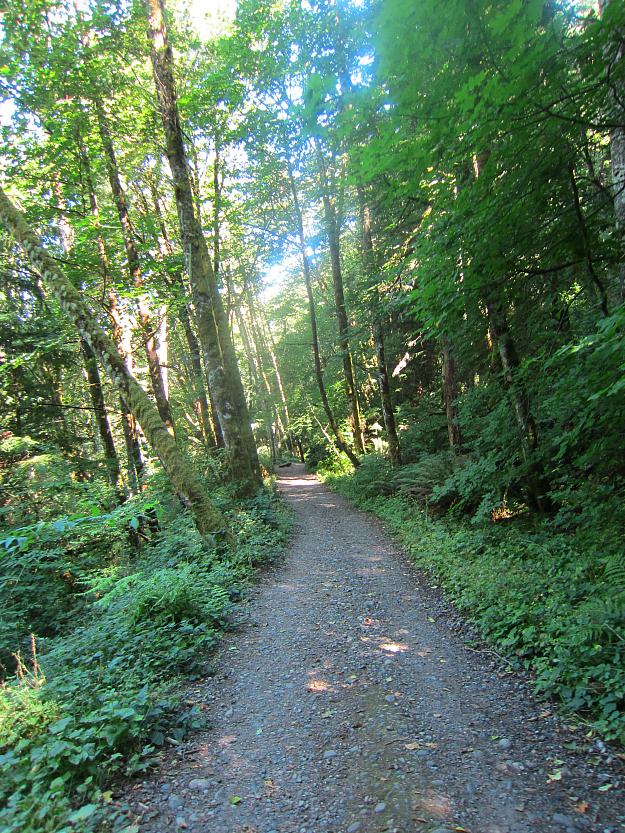 West Tiger 3 Trail 1