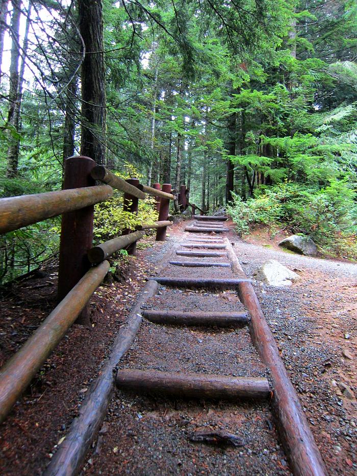 Franklin Falls Hike 1