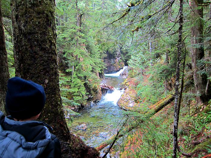 Franklin Falls Hike 3
