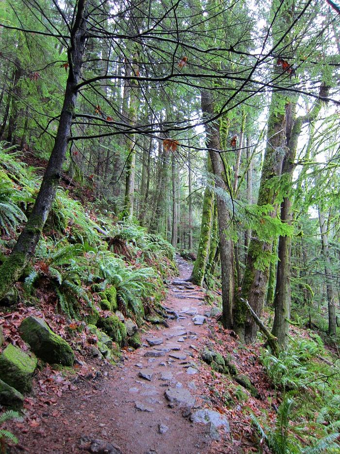 Chirico Trail 1