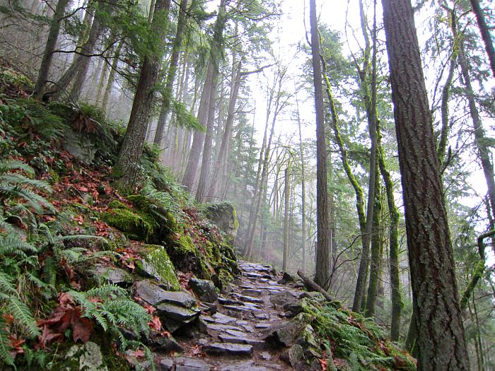 Chirico Trail 2