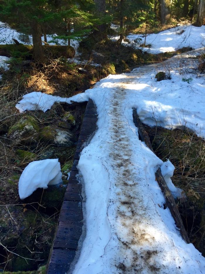 PCT Trail
