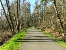 Soos Creek Trail Runner