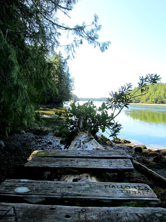 Big Trees Trail End