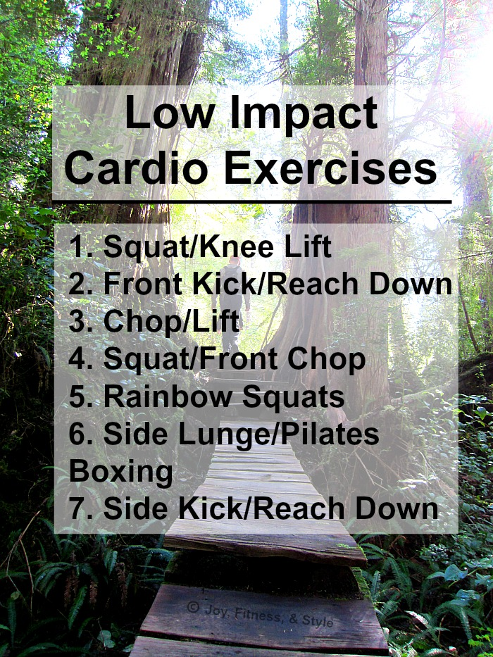 Low impact cardiovascular exercises