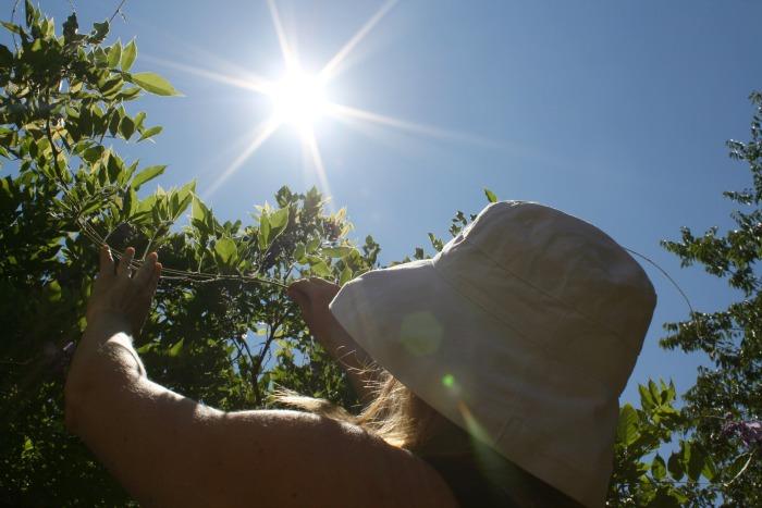 Scala Sun Hat Review Sun