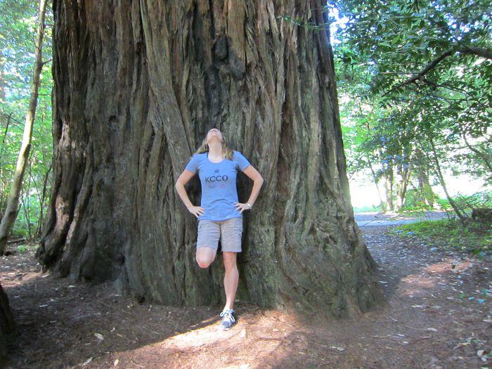 me and a big tree